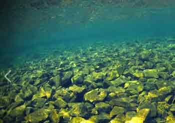 The Pinnacles underwater