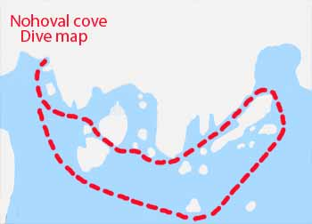 Nohoval cove dive map